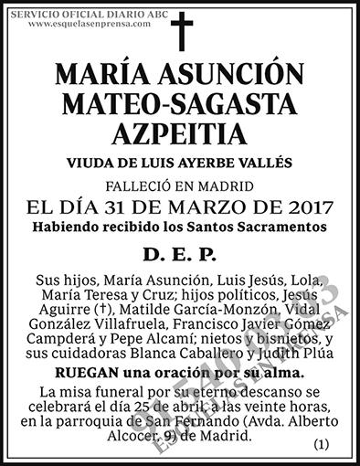 María Asunción Mateo-Sagasta Azpeitia